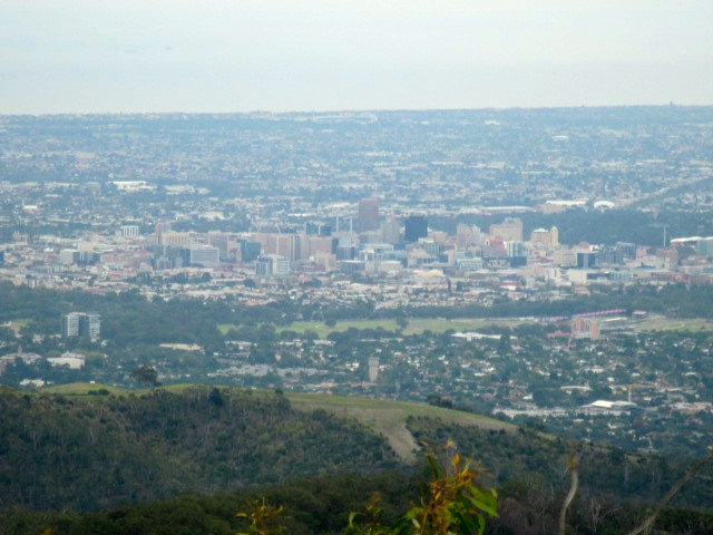 view-of-adelaide-from-mt-lofty